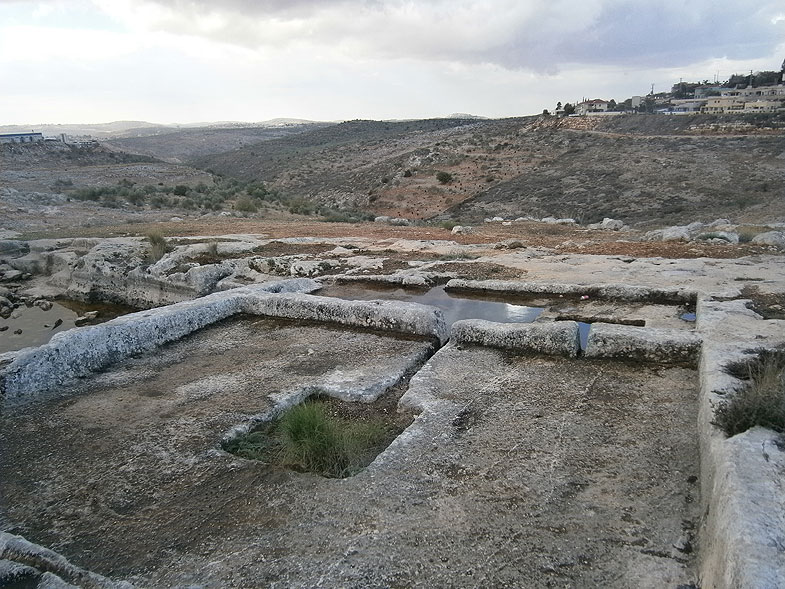 Ancient winery in Shomron