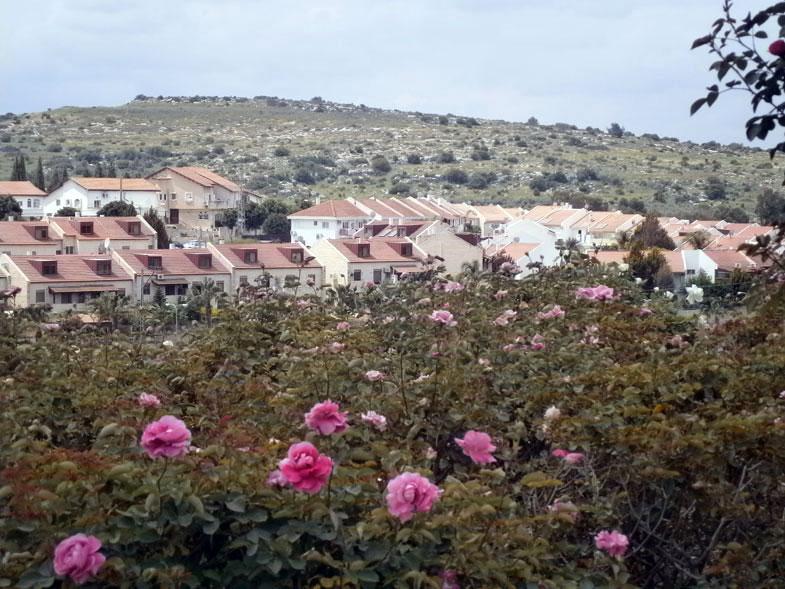 Beit-Shemesh