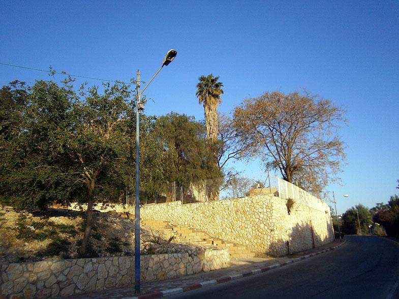 ����, Acre. Photo:  Netzah.org (c)