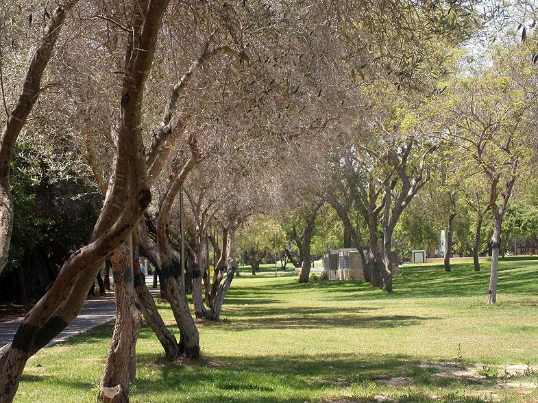 Kiryat Bialik. HaBanim Park