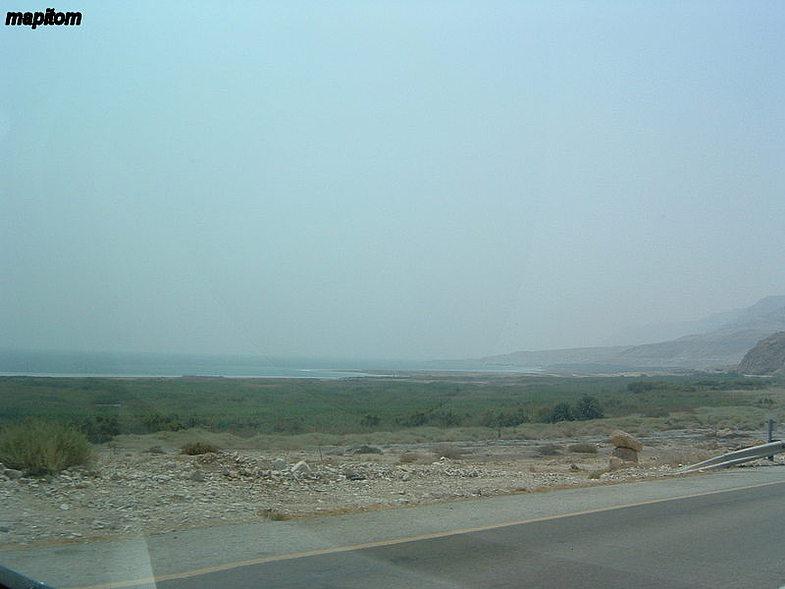 Dead Sea. Oasis