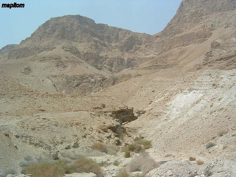 Мертвое море. Оазис