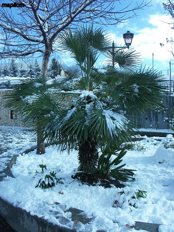 Поселение Эфрат под снегом