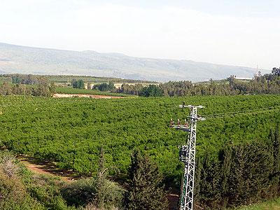 Галилейский