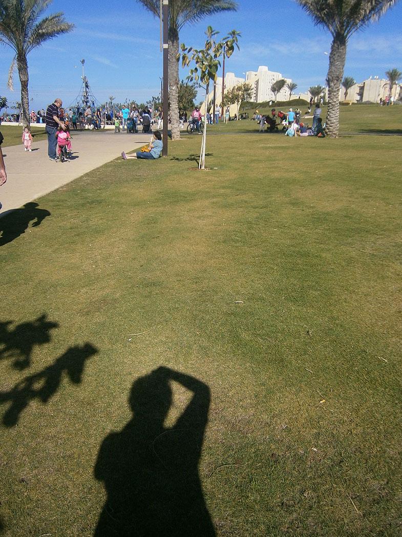 Haifa. Hecht Park
