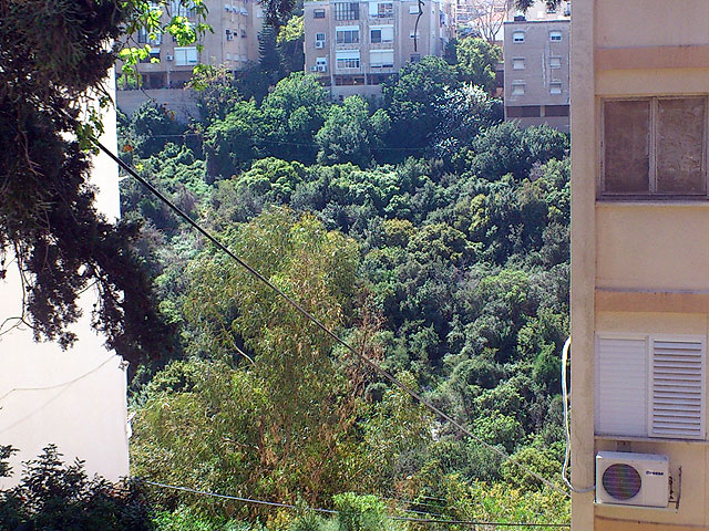 Haifa. View of the Nahal Lotem from Kiryat Sprinzak