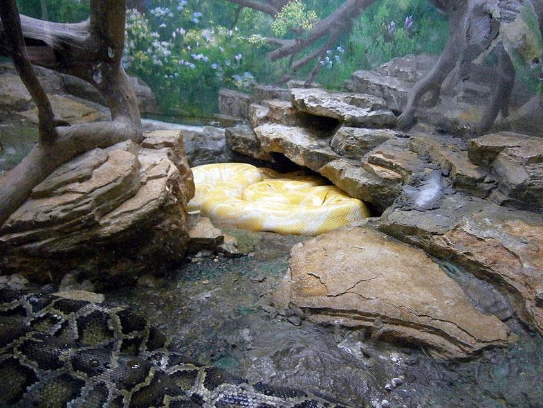 Хайфа. Зоопарк
