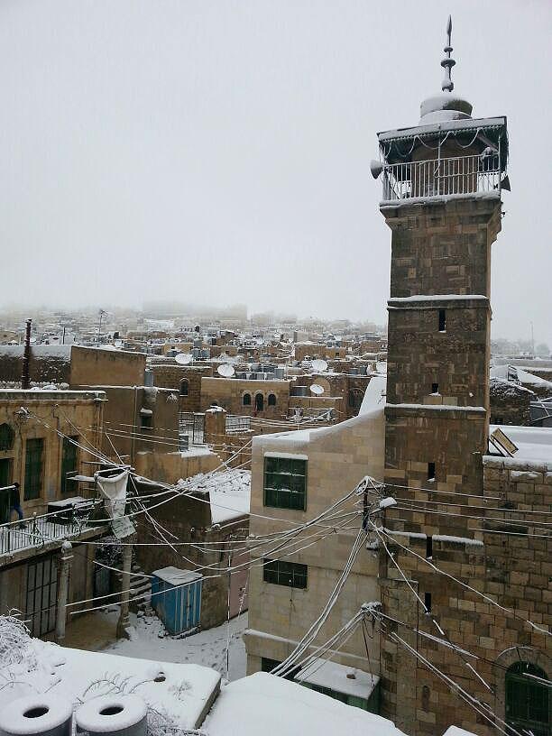 Хеврон под снегом