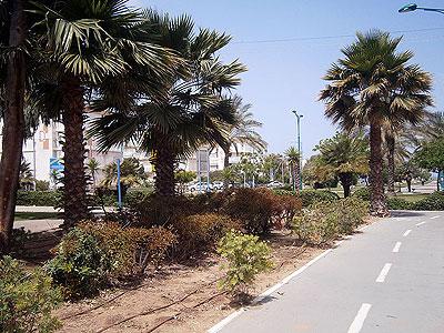 Кирьят-Хаим.
