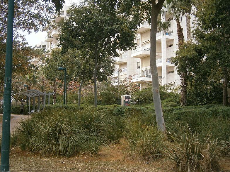 Kiryat Ono. Reisfeld Park