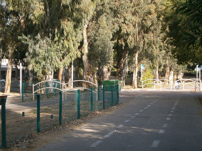 Kiryat Yam, Кирьят-Ям. Photo:  Netzah.org (c)