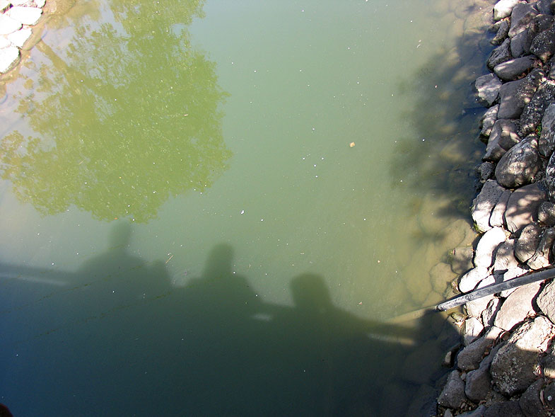 Озеро Монфорт