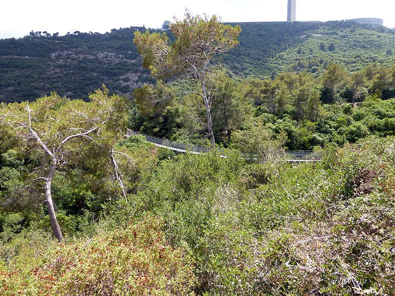 Парк Нешера с висящими мостами
