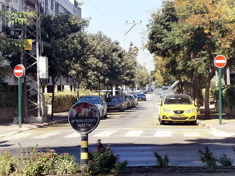 Raanana, Раанана. Photo:  Netzah.org (c)