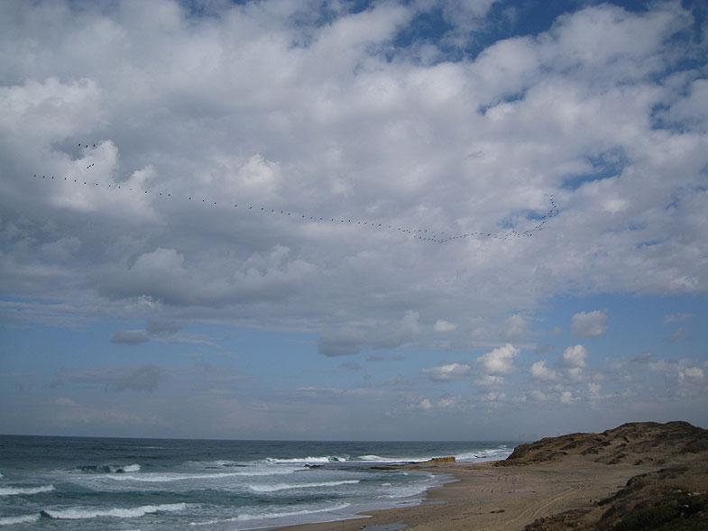 Пляж Пальмахим возле Ришон-ле-Циона