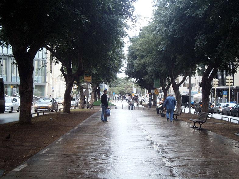 Tel Aviv. Rothschild Boulevard
