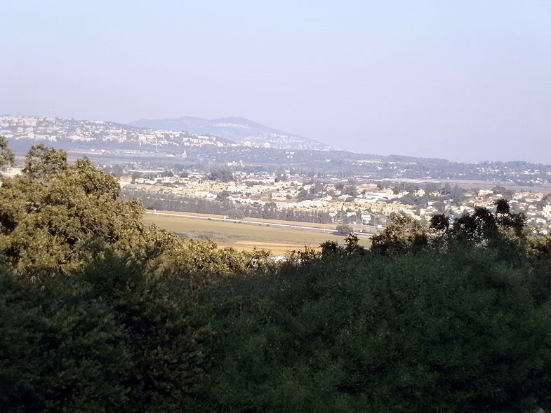 Kiryat Tivon. Alonim