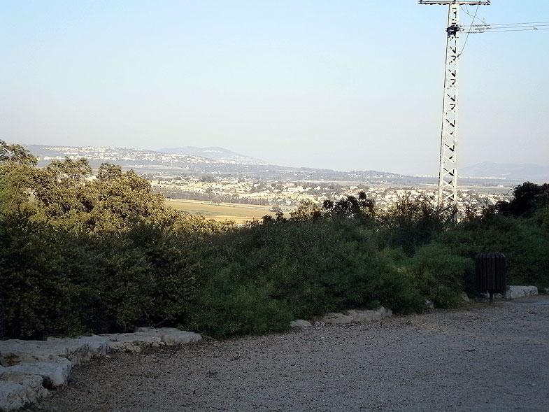 Kiryat Tivon. Alonim