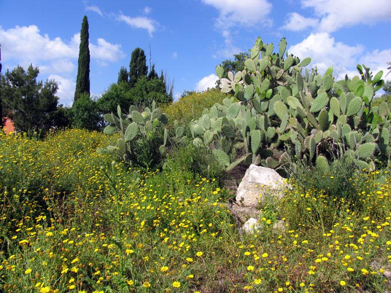 Национальный парк Ципори