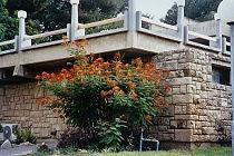 חצור אשדוד. Photo: hatzor.org.il