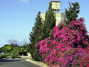 Kfar Warburg. Photo: beer-tuvia.org.il