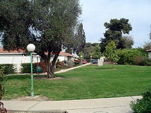 ניר עם. Photo: sng.org.il